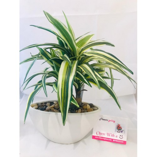 Artificial Plant with White Pot