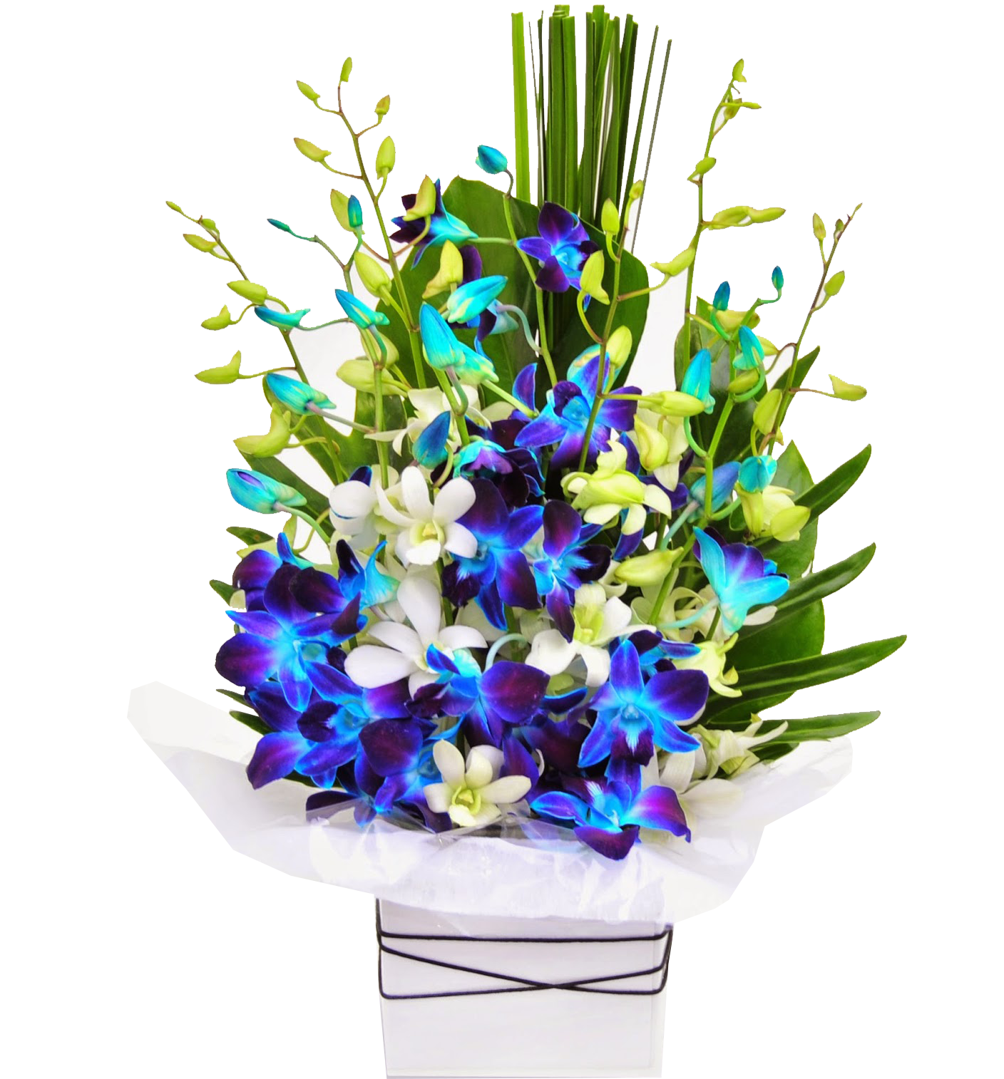 Flowers galaxy online flowers delivery in india orchid shine orchid shine izmirmasajfo
